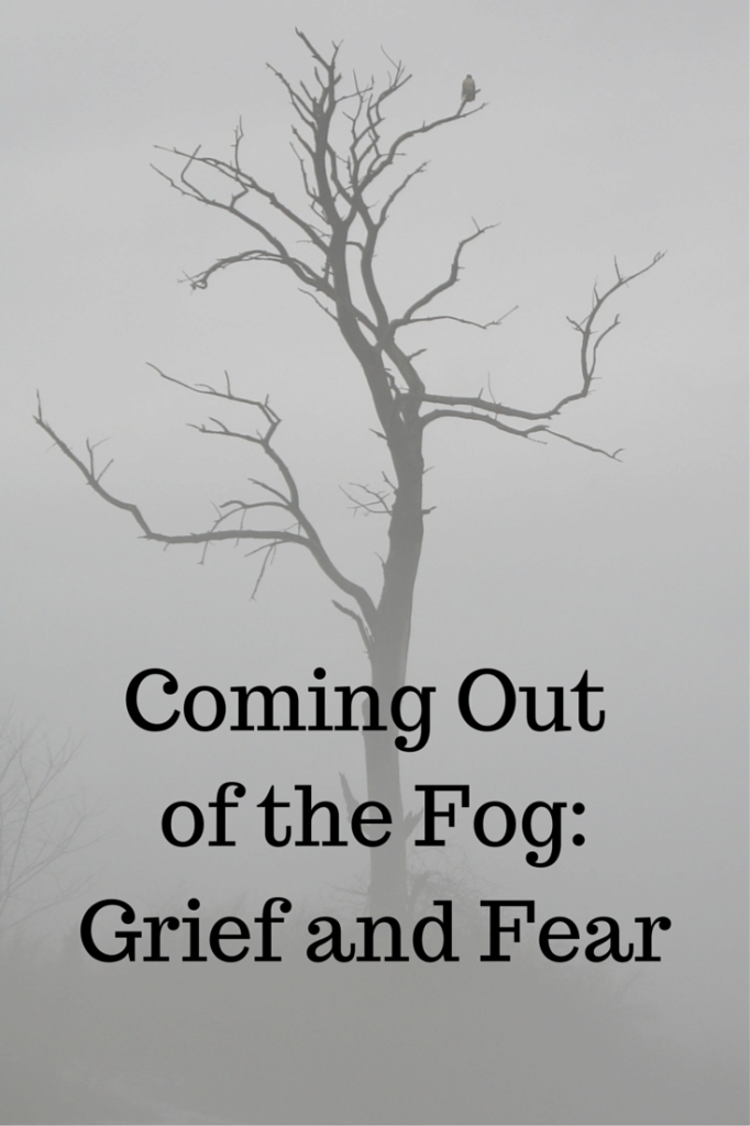 Coming Out of the Fog- Grief and Fear