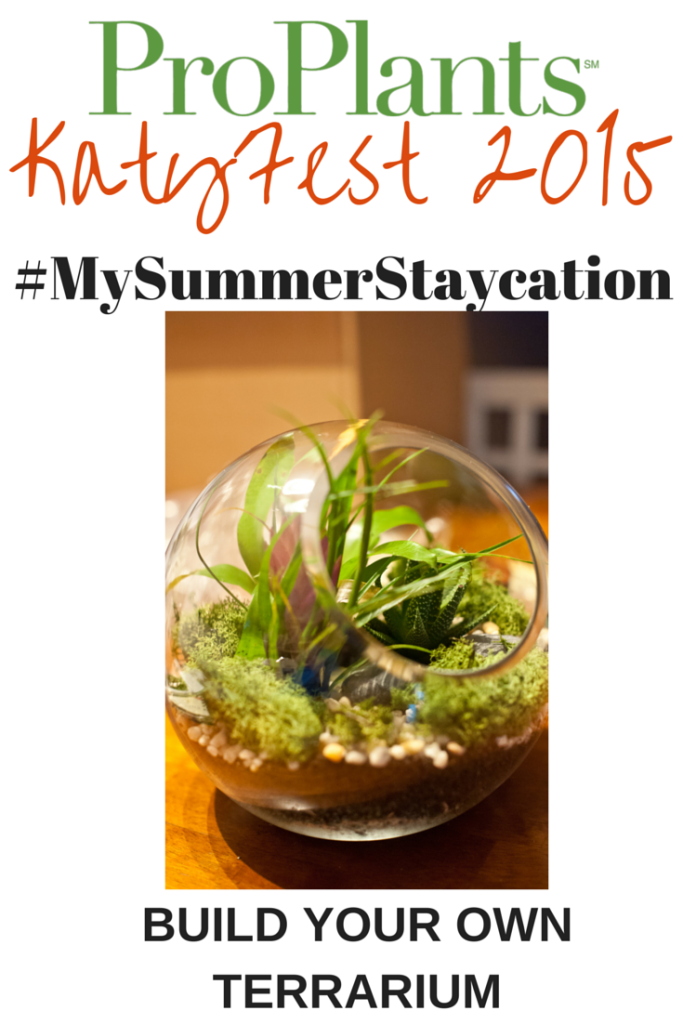 #MySummerStaycation